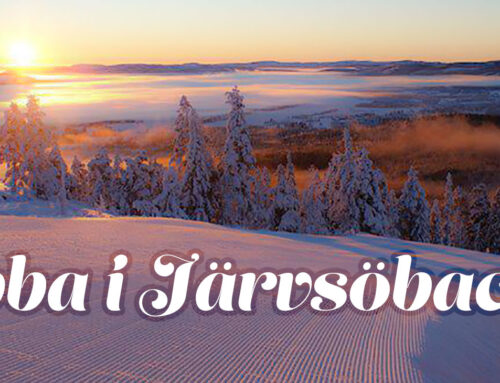 Jobba i Järvsöbacken 2019-2020